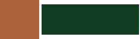 НКО «Социально-культурный фонд развития и инновации»